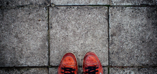 blog jak zarządzać zdjęcia posty9 (1)